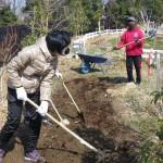 畑プロジェクト3月2日の様子