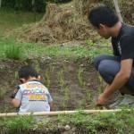 畑プロジェクト6月7日の様子